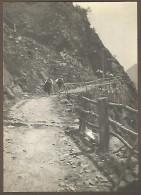 Champorcher, Valle D´Aosta, 4.8.1911, Presso Mellier, Fotografia Autentica Originale D´epoca Cm. 7,5 X 10. - Luoghi