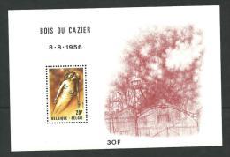 Feuillet - Accident Mine Marcinelle - Bois Du Cazier 1956 - Minerales
