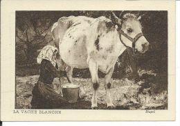 CHROMO , MUSCULOSINE BYLA , Jus De Viande Crue , La Vache Blanche - Chromos