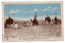 timbres Alg�rie--Afrique du Nord--1950--D�part d'une caravane(anim�e,chameaux en apparat),n�3077 �d Photo Africaines