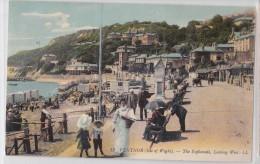VENTNOR (Isle Of Wight) - The Esplanade, Looking West - LL12 - Ventnor