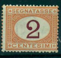 REGNO 1870-1874 SEGNATASSE  CIFRA 2 C. OCRA E CARMINIO MNH** - Non Classés