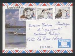 Lettre De Nouméa Pour La France - Oiseaux - Anous Stolidus - Sterna Dougallii - Sula-Sula -  1995 - Cartas