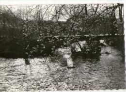 CPSM      23     MONTBOUCHER    1967    PONT SUR LA BERAUDE   COLONIE LE GAI MANOIR - Ponts