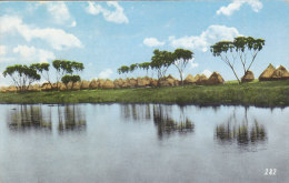 Sudan - Shambe Village At White Nile Real Photo Postcard 1962 - Soudan