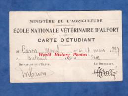 Carte Ancienne D'étudiant - ALFORT - Ecole Nationale Vétérinaire - M. Caron De Bréteuil - 1918 / 1919 - Service De Santé - Documents Historiques