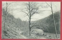 Daverdisse - Aux Faliseux - 1923  ( Voir Verso ) - Daverdisse