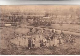 Sijsele, Sysseele, Sanatorium Elisabeth, Park, Parc (pk16487) - Damme