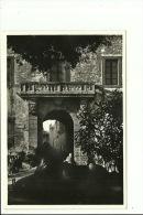 Monteporzio Catone - Hotel Giovannella Ristorante - Il Portale Di Palazzo Borghese Sulla Piazza  Omonima - Cafés, Hôtels & Restaurants