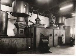 GRANDE PHOTO ALAMBIC DE LE MAISON R LATREUILLE (PRODUCTEUR DE COGNAC) A GEMOZAC (PHOTO E FOUCHE JAZENNES) - Métiers