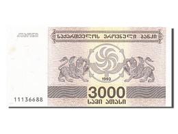 [#256055] Géorgie, 3000 Laris, Type 1993 - Géorgie