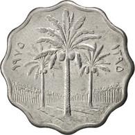 [#86994] Irak, République, 5 Fils 1975, KM 125a - Iraq