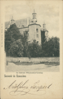 BE ECAUSSINES / Le Château / - Ecaussinnes