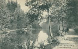 BE ESNEUX / Fond De Mary, L'étang Aux Truites / - Esneux