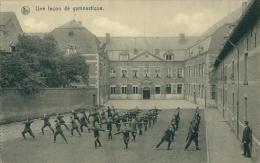 BE FERRIERES / Etablissement De Saint Roch, Leçon De Gymnastique / - Ferrières