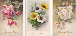 Lot  DE  6   CP    DE  FLEURS  DIVERSES     -  Toutes Scanées ) - Cartes Postales