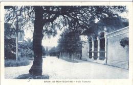 BAGNI DI MONTECATINI  -VIALE TAMERICI   CARTE ANIMEE - Italie