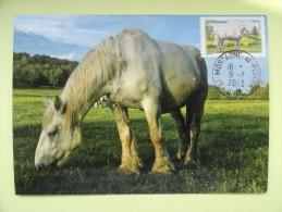 CARTE MAXIMUM CARD LE PERCHERON  FRANCE - Horses