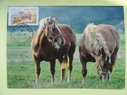 CARTE MAXIMUM CARD LE CHEVAL BRETON FRANCE - Horses