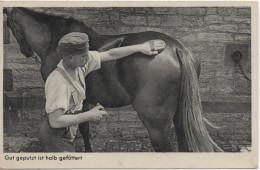 Nr.  4758,  Deutsche Wehrmacht Beim Pferde Putzen - Oorlog 1939-45