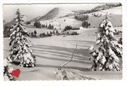 """03294-LI-ALLEMAGNE-Skihutte """" Hormoos-Alpe """" (12900 M)-Ueber Steibis Im Allgau - Oberstaufen"""