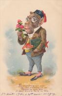 ILLUSTRATEUR / SINGE HABILLE / TU CHERCHAIS UN AMI - 1900-1949