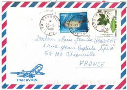 COSTA D'AVORIO - Côte D'Ivoire - YVORY COAST - 2000 - Air Mail - Poisson + Telfaira Occidentalis - Viaggiata Da Bango... - Costa De Marfil (1960-...)