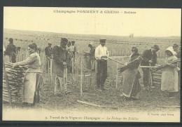 Travail De La Vigne En Champagne (Réédition D'une Carte Ancienne) - Vignes