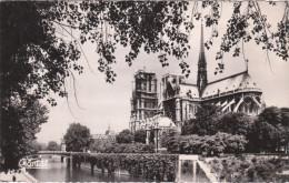 Carte Postale Des Années 50 De Paris - Notre Dame - Paris (04)