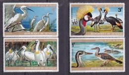 1974 SENEGAL - Birds 4v., Vogels, Oiseaux Du Parc Djoudj Yv 134/37 Michel 543/46  MNH - Marine Web-footed Birds
