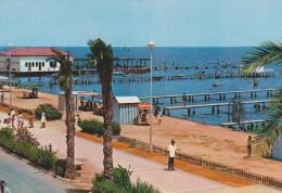 SANTIAGO DE LA RIBERA (Mar Menor, Murcia). Vista Parcial (ca. 1965) - Murcia