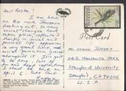 Jamaica Postcard Greetings From Jamaica, Port Antonio, White Chinned Thrush 35c Sent To Pakistan. - Jamaica (1962-...)