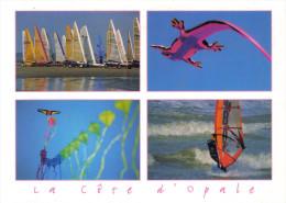 Carte Postale 62. Berck   Cerfs-Volants  Char à Voile    Trés Beau Plan - Berck