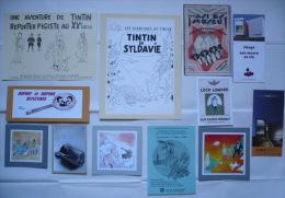 Lot 12 Docs TINTIN PARA-TINTIN (cartes PASTICHES + RARETÉS Diverses) / LOT N°2 - Tintin