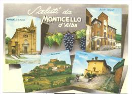 Monticello D'alba Saluti Non Viaggiata F.g. Ottimo Stato - Cuneo