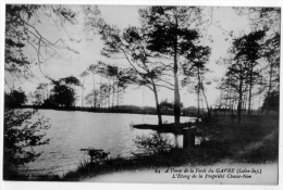 Forêt Du Gavre Loire Atlantique Lot 2cpa Chêne Au Duc Lac 1916 état Superbe - Le Gavre