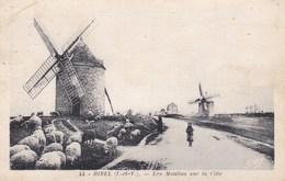 Hirel - Les Moulins Sur La Côte - France