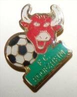 FOOTBALL FC BOOFZHZEIM VACHE - Calcio