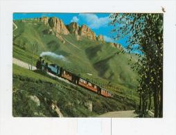 Ferrovia A Cremagliera ROCCHETTE-ASIAGO E M.Pau'-1982 - Vicenza