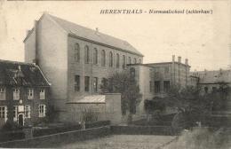 BELGIQUE - ANVERS - HERENTALS - HERENTHALS - Normaalschool (achterkant) - Ecole Normale. - Herentals