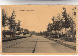 Jabbeke Rooseveldlaan (pk16893) - Jabbeke