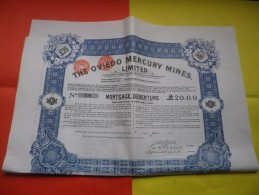 THE OVIEDO MERCURY MINES (1910) - Actions & Titres