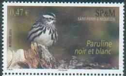 Saint Pierre Miquelon 2010 - Paruline Noir Et Blanc / Black And White Warbler - MNH - Passereaux