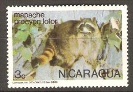 NICARAGUA     -     RATON  LAVEUR - Rongeurs