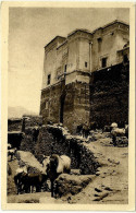 Maroc CPA Kasbah De Telouet Grand Atlas Chevaux - Marrakesh