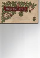 MONTREJEAU   Carnet De Cartes Postales - Montréjeau