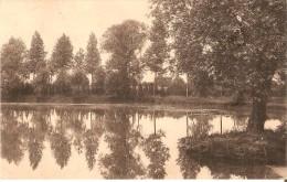 PUTTE-GRASHEIDE Bij MECHELEN (2580) : Familiepensionaat Van Der Borght. Ven (park) Zicht. CPA. - Putte