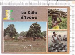 LA  COTE  D  IVOIRE  -   Cases Et Greniers -  La Potière - Femme Et Travaux Champêtres  - 3  Vues - Côte-d'Ivoire