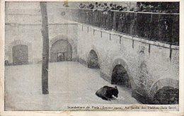 CPA PARIS - INONDATIONS DE PARIS JANVIER 1910 - AU JARDIN DES PLANTES - BAIN FORCE - Paris Flood, 1910