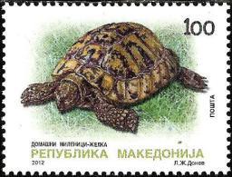 Macedonia - 2012 - Fauna - Turtles - Mint Stamp - Mazedonien